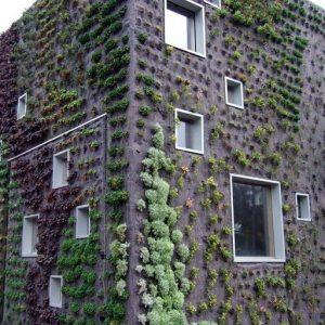 living wall felt