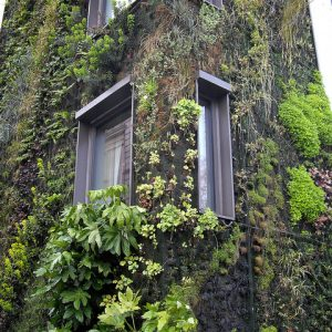 vertical garden felt ideas