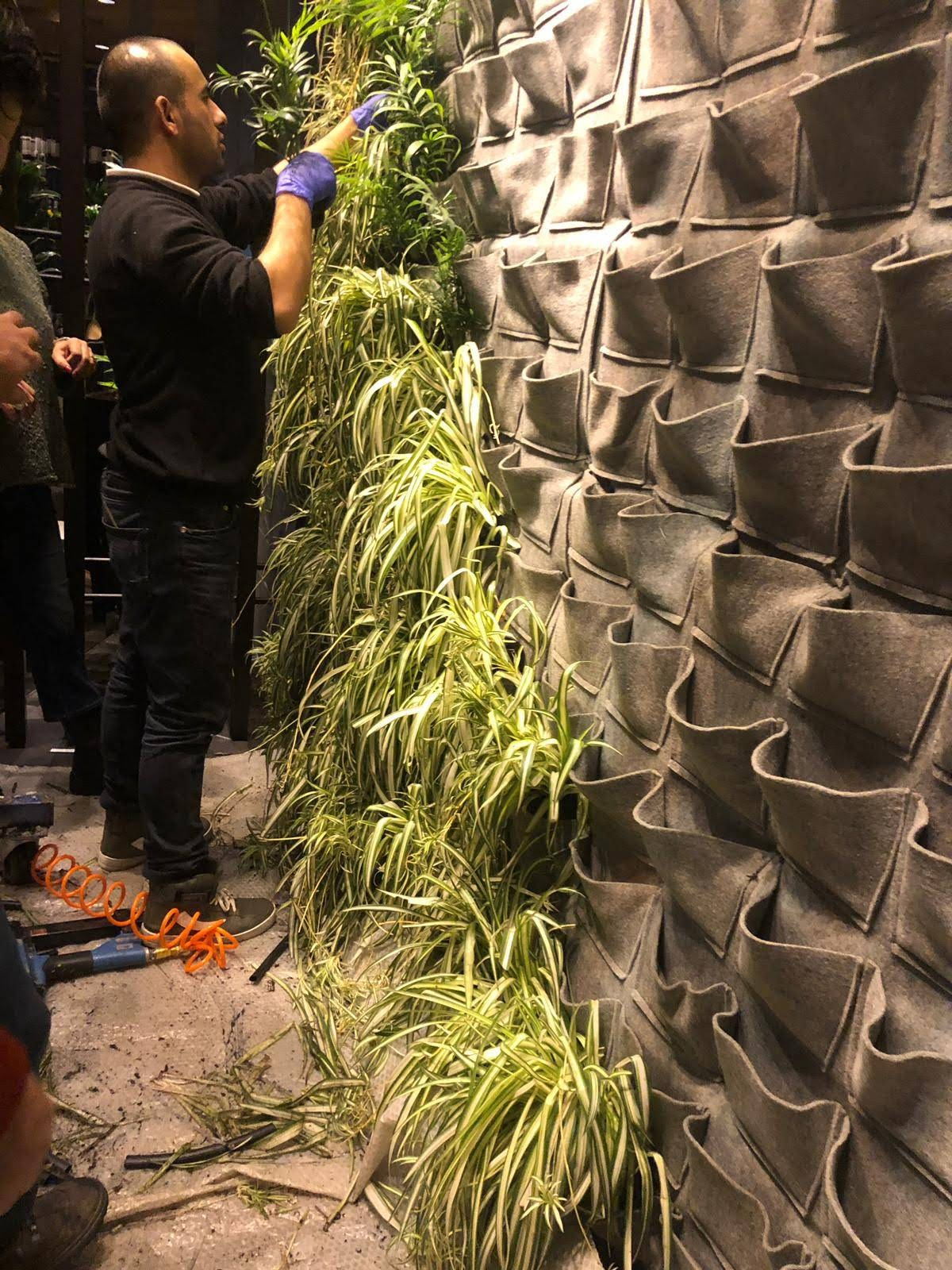 Felt Pocket Living Walls Projects Wholesale Supplier